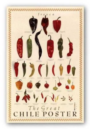 Chile Pepper Poster