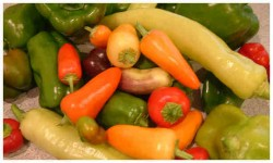 Bell, Sweet and Hot Peppers (Click for larger image)